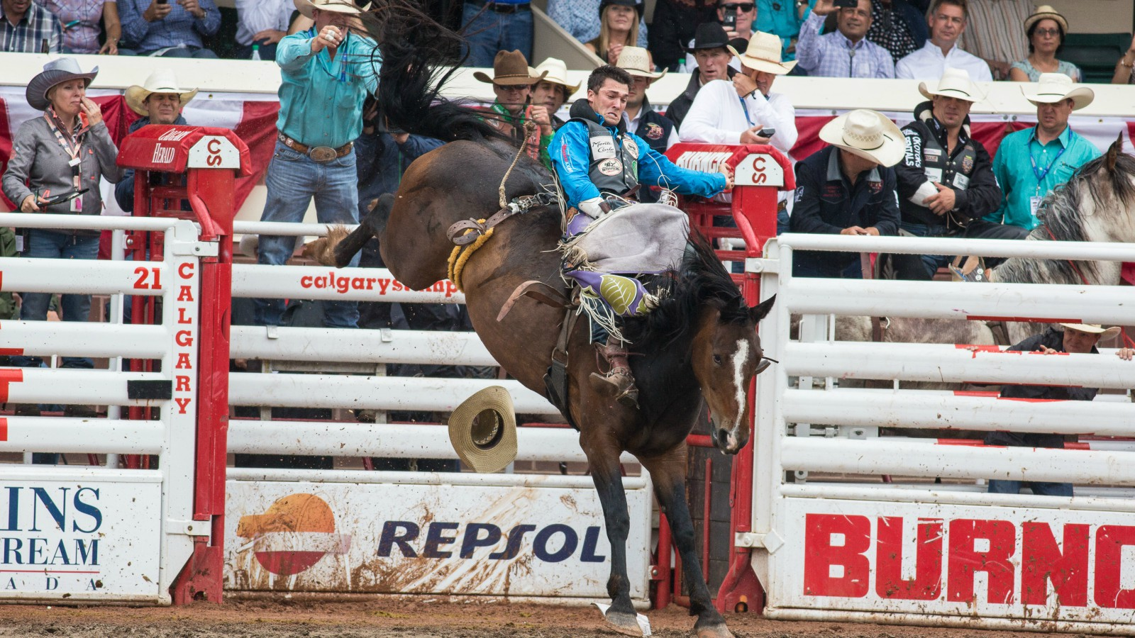 Calgary Stampede Hotels - Rodeo